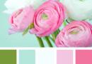 Сочетание розового в 888 цветовых палитрах