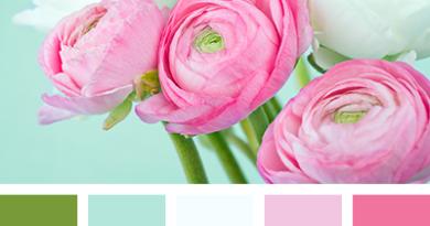 цветовая палитра сочетания розового цвета