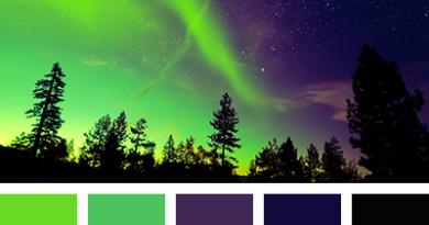 цветовая палитра сочетания зеленого цвета