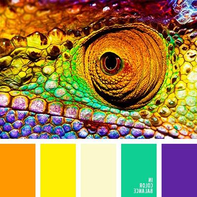 цветовая палитра сочетание желтого цвета с другими цветами