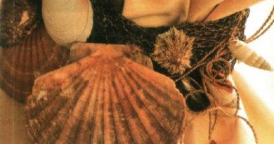 подхват для штор из морских раковин