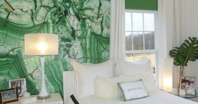 шторы под зеленые стены